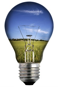 572807-light-bulb-with-landscape-inside-environmental-concept